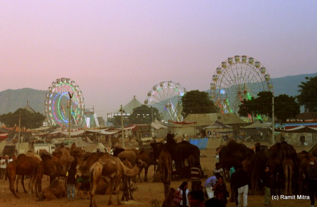 The carnival like atmosphere gets heightened as the sun sets and the big Ferris Wheels light up awaiting the crowds...